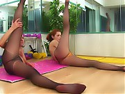 Two gym pantyhose girls exercises synchronically